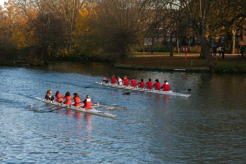 junior-oarsmen-teamwork
